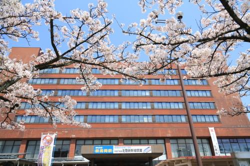 高岡市役所桜