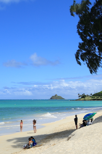 kailua beach (1)