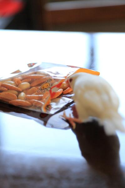 kakinotane pi-nattu daisuki (3)