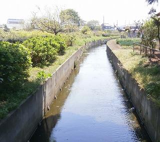 林神社林川