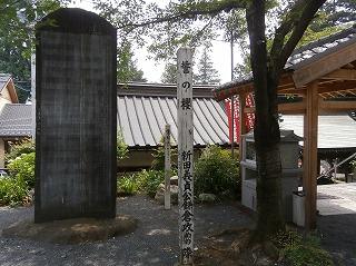 金乗院義貞桜