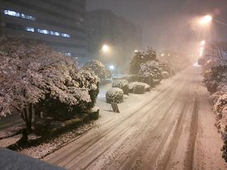 2014 雪 4
