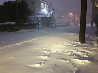 2014 雪 2