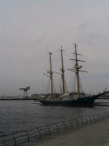 P9150749 (300x225)