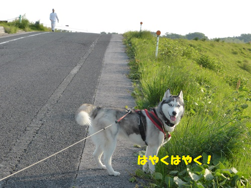 20140510131154f45.png