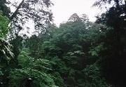 榛名神社27