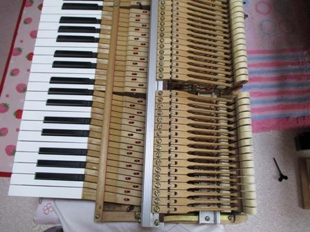 ピアノ鍵盤修理後⑥