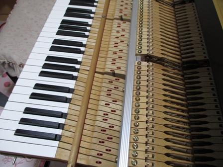 ピアノ鍵盤修理後⑦