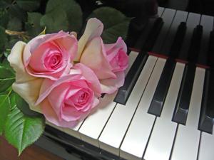 バラと鍵盤01_edited-1