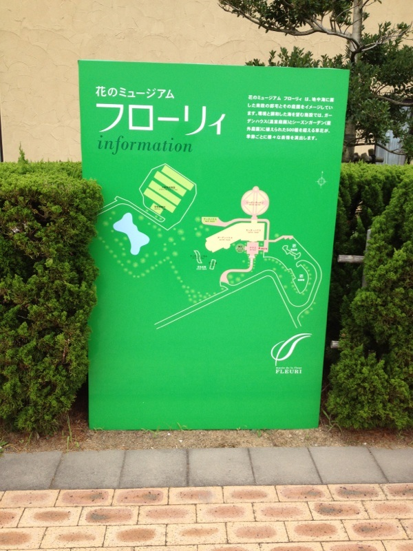 IMG_4807mmm.jpg