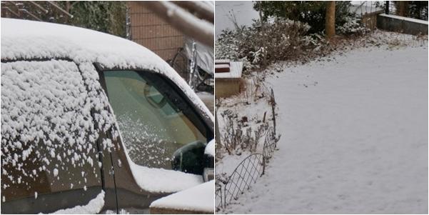 雪1 14-2
