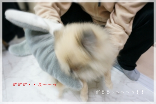 vsさめちゃん6 14-3
