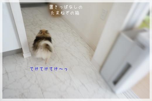 逃走まろん9 14-4