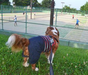 001テニス
