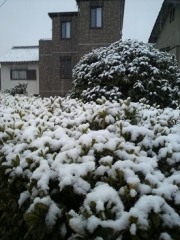 雪20140214
