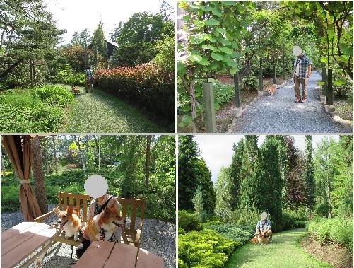5真鍋庭園A