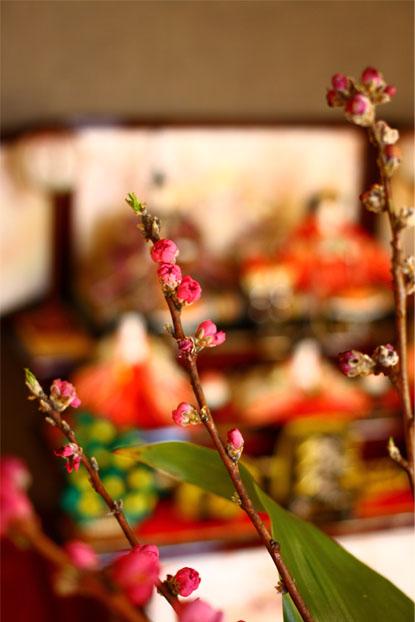 お雛様と桃の花