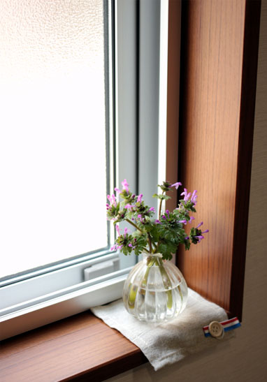 キッチン窓辺のお花