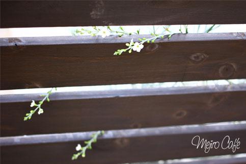 140605ウッドフェンスに白花