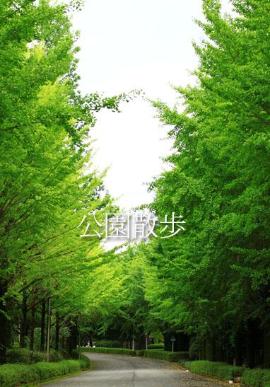 140716公園散歩