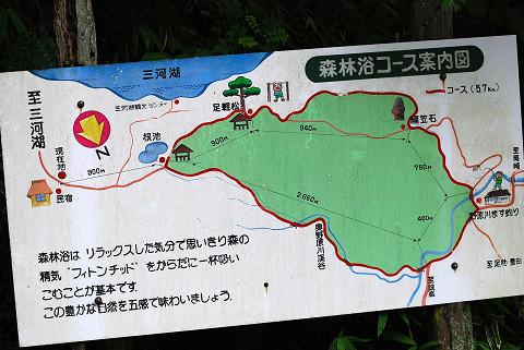森林浴コース看板