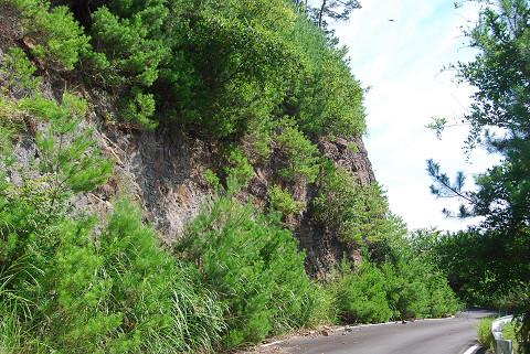 変成岩の崖が