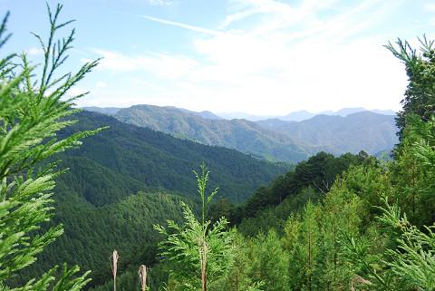 豊川水系の深い谷