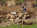 farm-jyuki3-web300.jpg