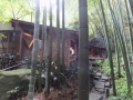 hokokuji-mattya1-web300.jpg