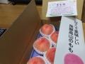 takayamamomo2-web300.jpg