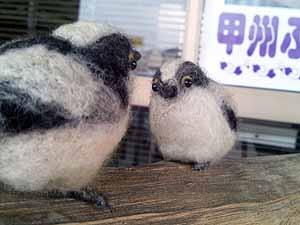 羊毛野鳥メンテ1