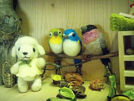 野鳥羊毛0323-7