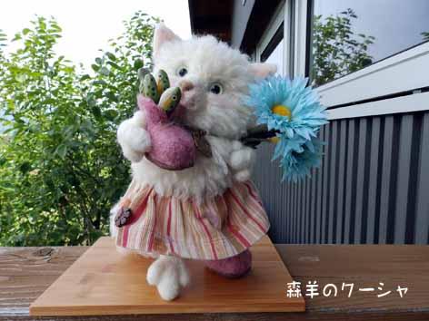 白ネコ羊毛20140520-3