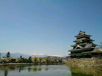 松本城にお花見3