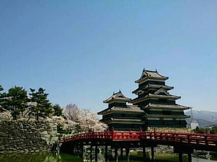 松本城にお花見4