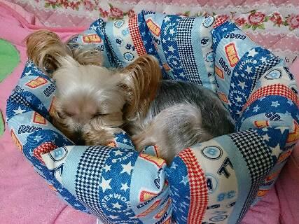ベッドを作ったよ2