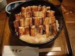 乞食実の旅行に関するブログ-あなご飯