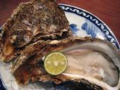 乞食実の旅行に関するブログ-牡蠣