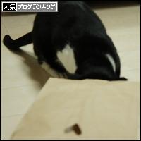 dai20140214_banner.jpg