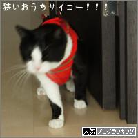 dai20140318_banner.jpg