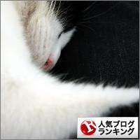 dai20140324_banner.jpg