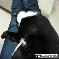 dai20140402_banner.jpg