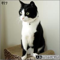 dai20140403_banner.jpg