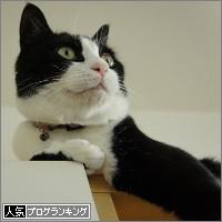 dai20140513_banner.jpg