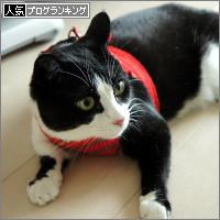 dai20140526_banner.jpg