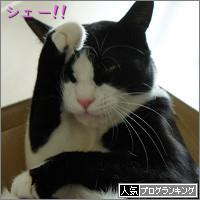 dai20140528_banner.jpg