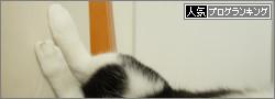 dai20140610_banner.jpg