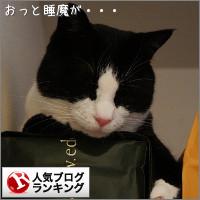 dai20140611_banner.jpg