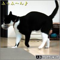 dai20140613_banner.jpg