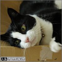 dai20140620_banner.jpg